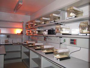Telemetry room