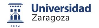 Univesidad de Zaragoza
