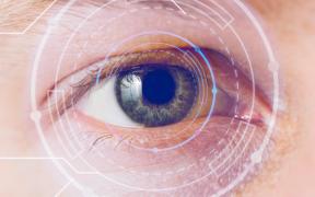 Un informe del IACS ayuda a profesionales y gestores sanitarios a establecer las pautas de programas de cribado de la retinopatía diabética