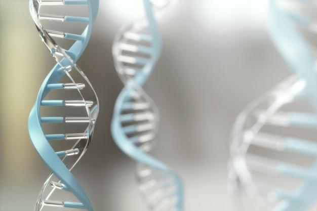Uso de la secuenciación genómica para visualizar la trazabilidad de la pandemia de COVID-19
