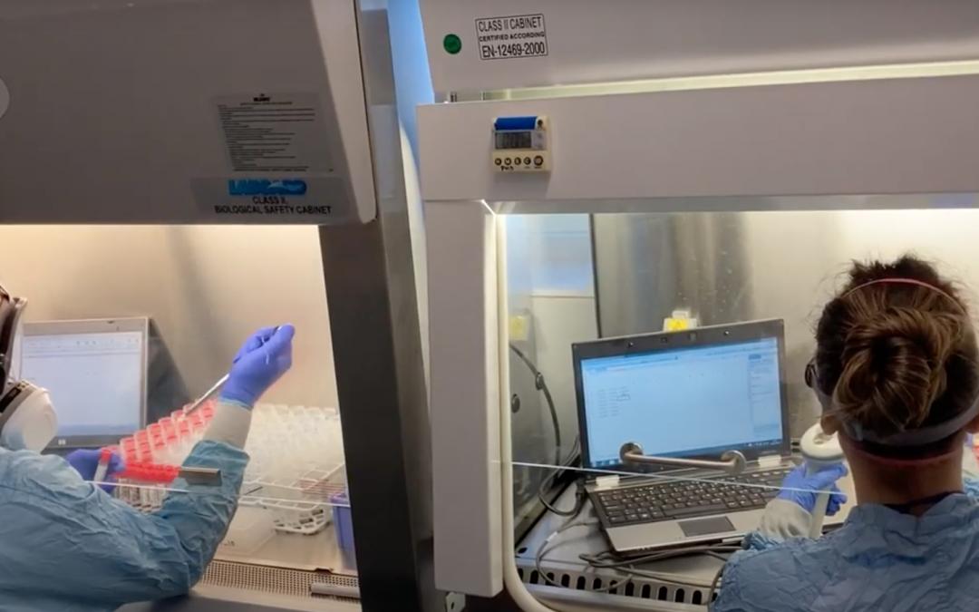Los científicos del IACS exponen cómo luchan contra el COVID en La Noche de los Investigadores 2020